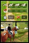 Horse Life Il tuo cavallo il tuo amico il tuo campione